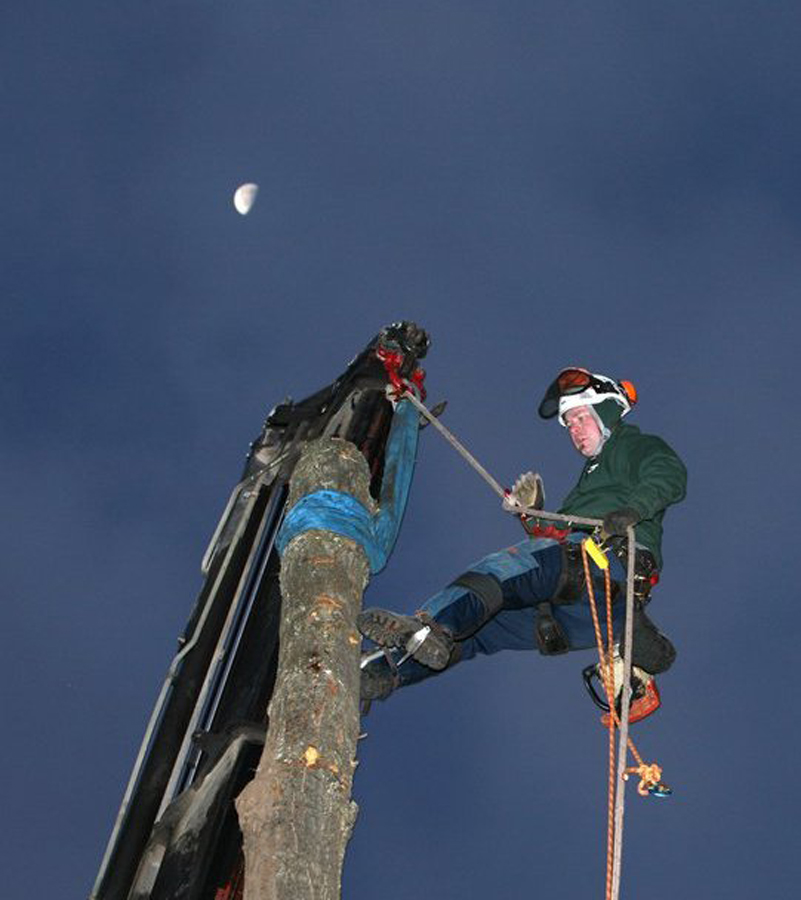 West Michigan Tree Service